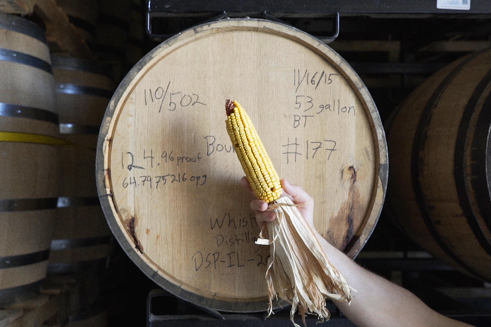 Whiskey barrel with corn | Whiskey Acres Distillery | John Fedele Agricultural Photography