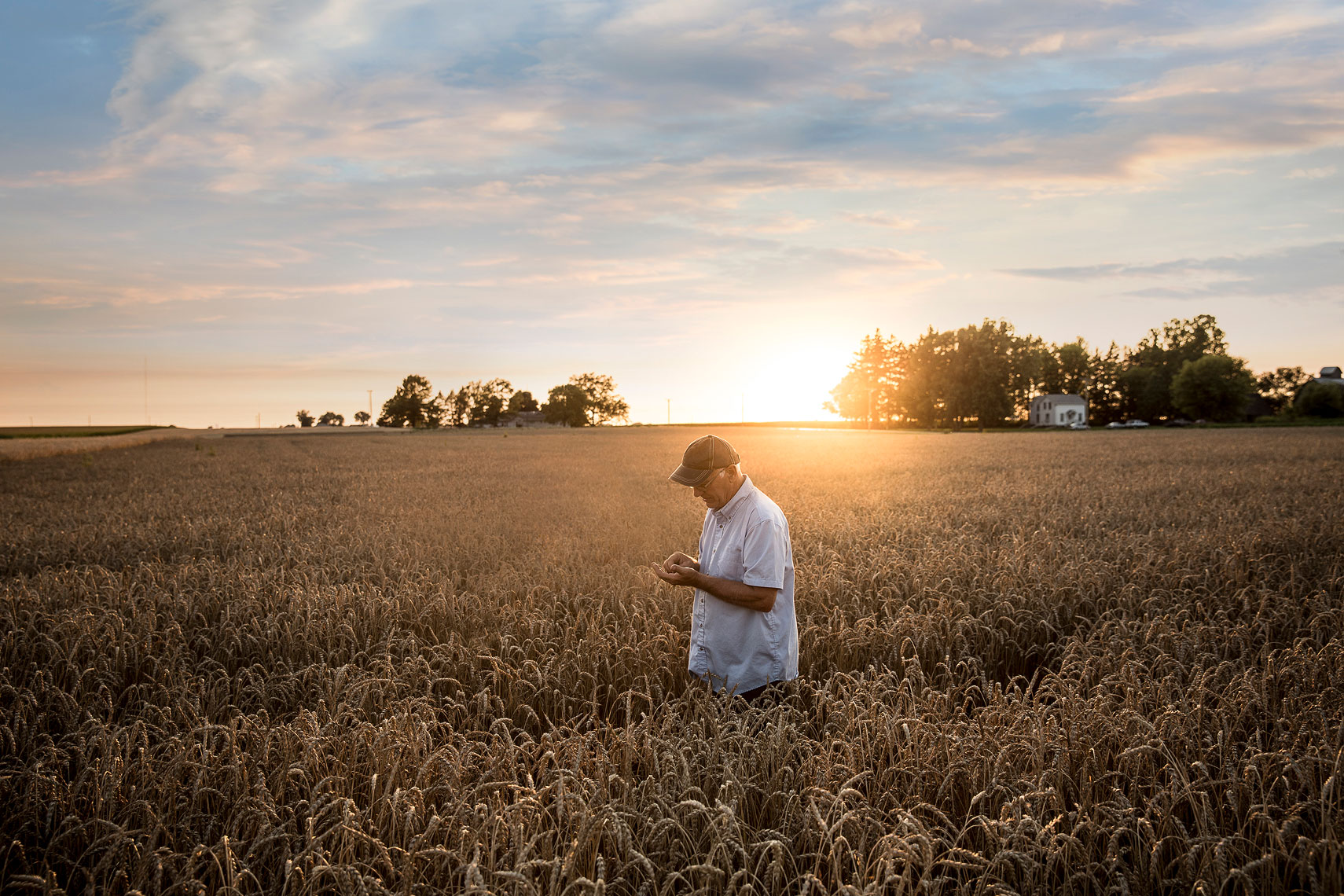 Sun setting behind a wheat field with a farmer | Whiskey Acres Distillery | John Fedele Agricultural Photography