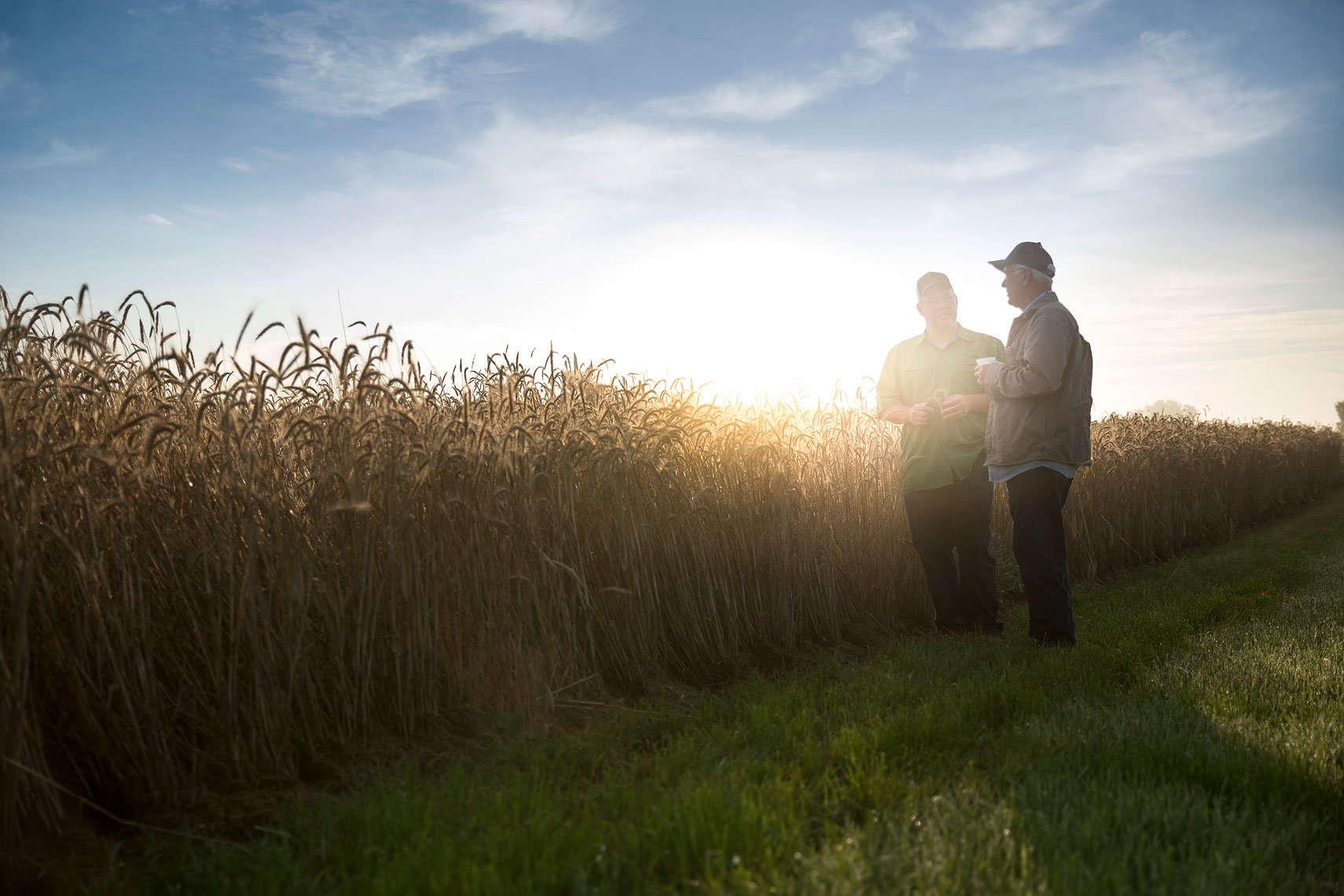 Rye field with 2 farmers | Whiskey Acres Distillery | John Fedele Agricultural Photography