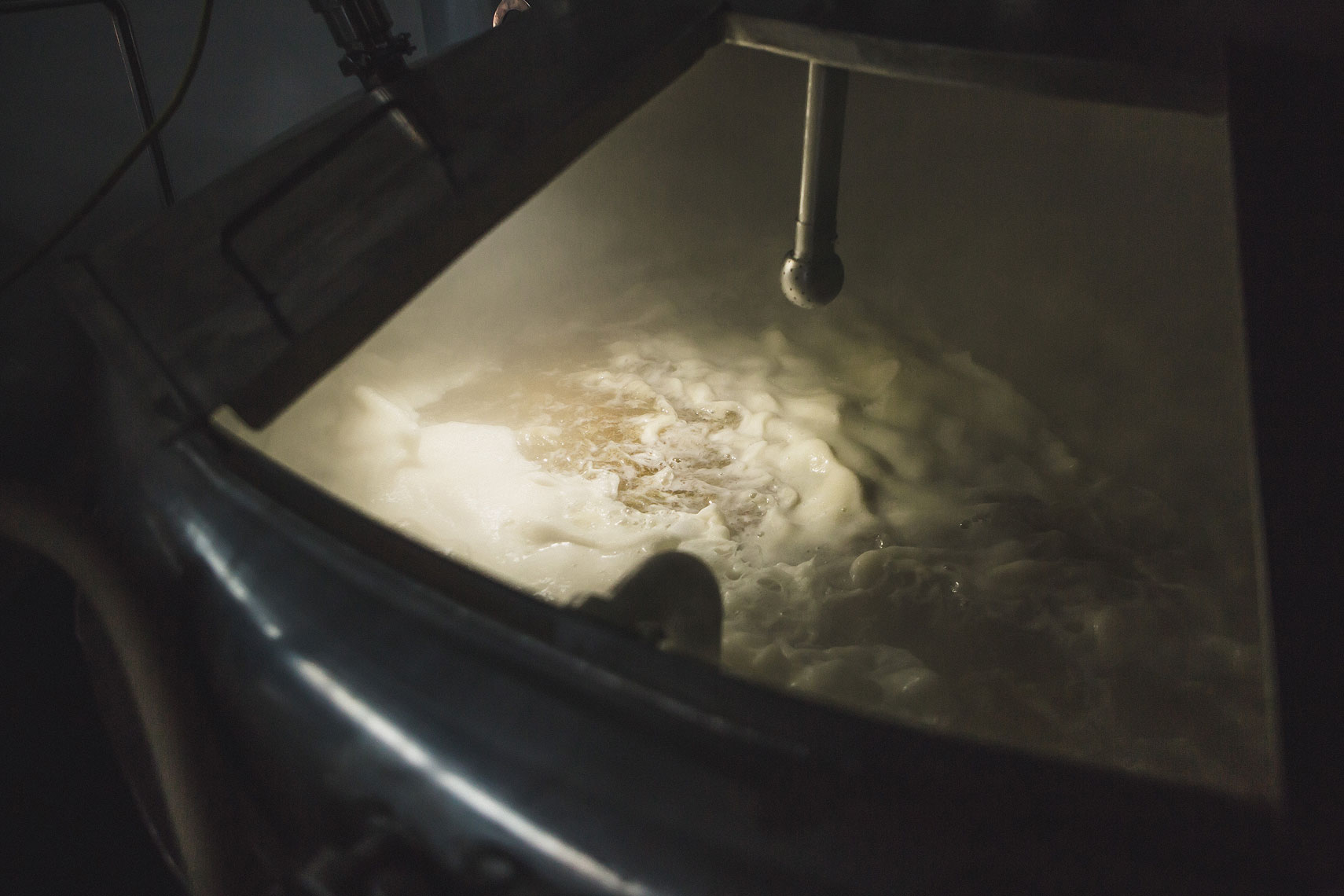 Close up of the wort in the brewing process | Side Project Brewery | John Fedele Photography
