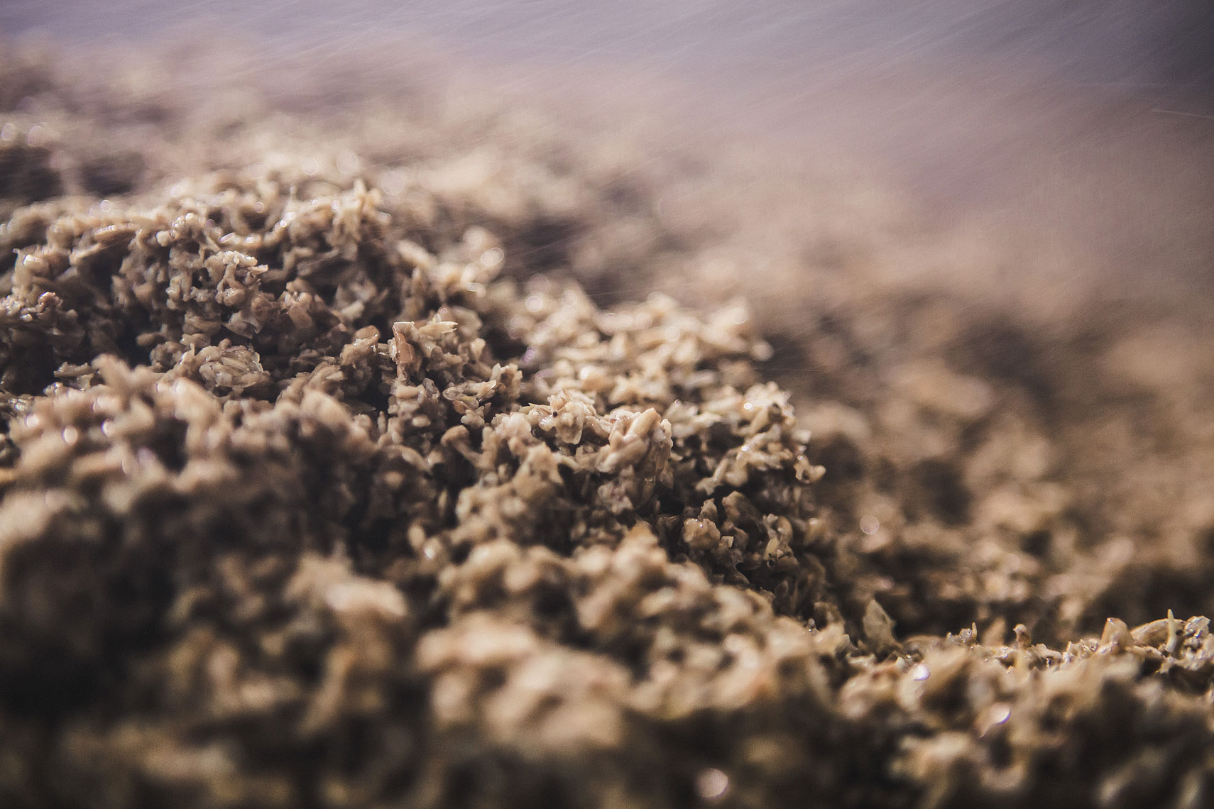 Close up of mash from brewing beer | Side Project Brewery | John Fedele Photography